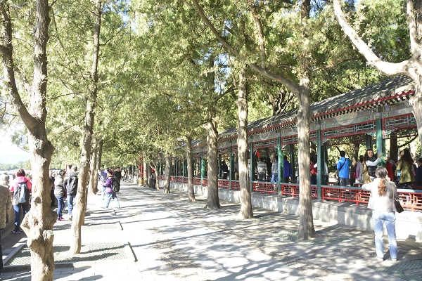 NOT AVAILABLE:china_20141013_111438.JPG